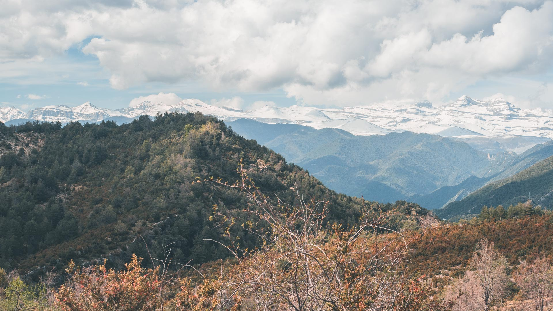 GLR 24 Region Image 1