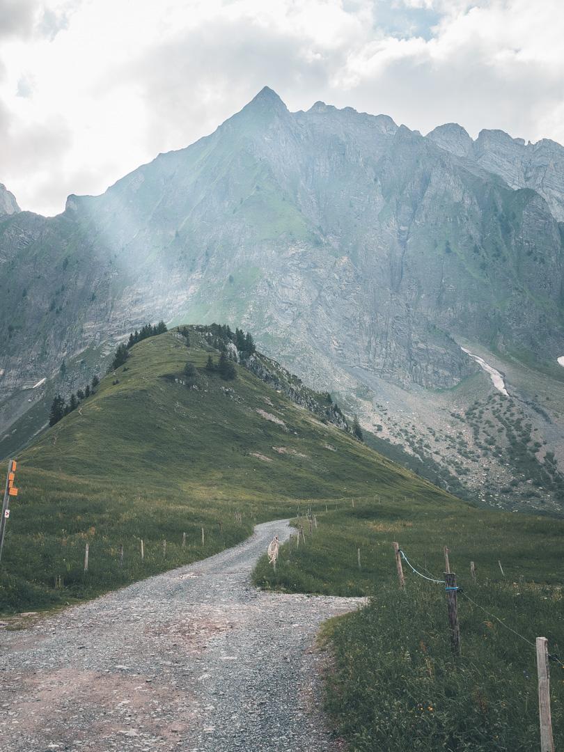 GLR 33 Region Haute Savoie Image 3